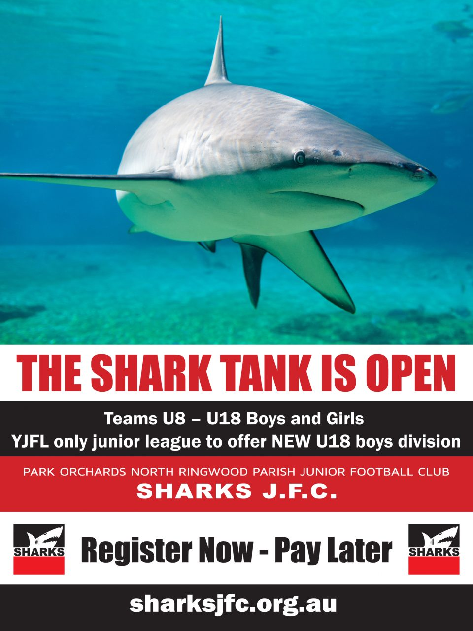 The Shark Tank is open - Teams U8 to U18 Boys and Girls - YJFLonly junior league to offer NEW U18 Boys division - Sharks JFC - Register now, pay later